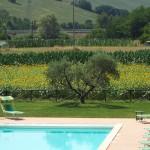 Agriturismo Villa CRU con piscina recintata